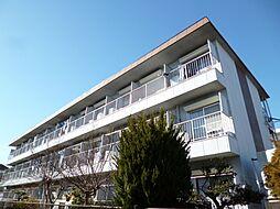 東京都羽村市栄町1丁目の賃貸マンションの外観