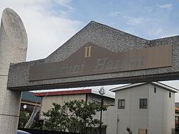 ミクニハイツ2[7階]の外観