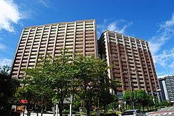 三国駅 14.5万円