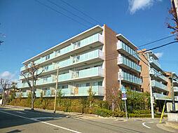 甲子園六石町ハイツ[318号室]の外観