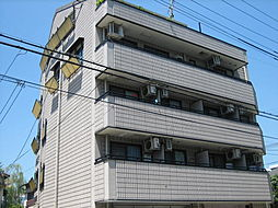 阪神本線 御影駅 5階建[203号室]の外観
