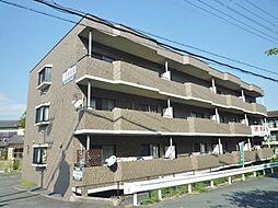 ガーデンハウス石山寺[100号室号室]の外観