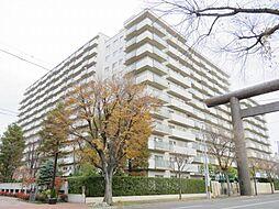 シーアイマンション円山西棟[11階]の外観