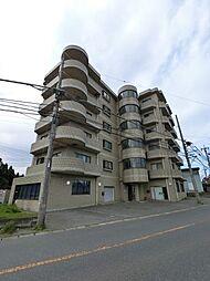 千葉県四街道市和田の賃貸マンションの外観