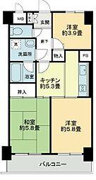 ライオンズマンション梅島[3階]の間取り