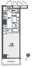 レクシード辰巳 1階1Kの間取り