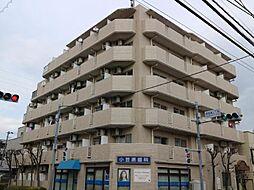 パレ・ドール亀有2[405号室]の外観