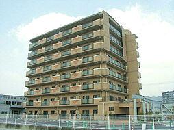 イーストヴィレッジ2001[8階]の外観