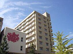 南国産業ビル[905号室]の外観
