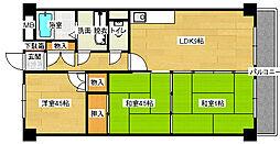 今村エステートマンションI[204号室]の間取り