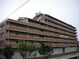 青山NKマンション[201号室]の外観