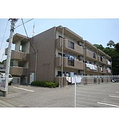栃木県宇都宮市下岡本町の賃貸マンションの外観