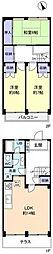 [テラスハウス] 千葉県船橋市芝山5丁目 の賃貸【千葉県 / 船橋市】の間取り