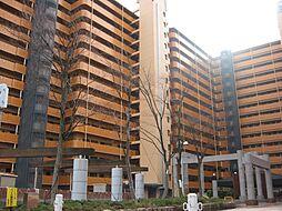 大阪府寝屋川市打上高塚町の賃貸マンションの外観