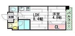 ライブガーデン江坂[5階]の間取り