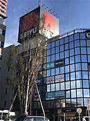 セイユーひばりが丘店(1447m)