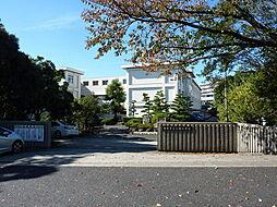豊田市立土橋小学校まで848m