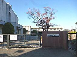 千代田小学校1200m