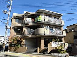 COZY中桜塚[302号室]の外観