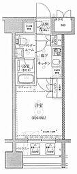 ライジングプレイス川崎[6階]の間取り