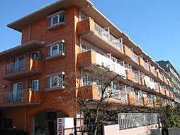 ファミール101[1階]の外観