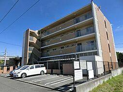 愛知県清須市西枇杷島町古城2の賃貸マンションの外観