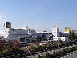 ショッピングセンターアピタ桃花台店まで650m