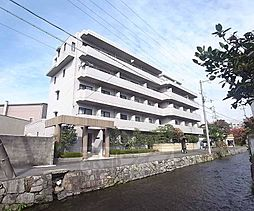 京都府京都市東山区石泉院町の賃貸マンションの外観