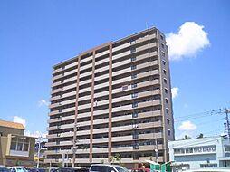 サーパス宮崎駅東[804号室]の外観