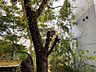 その他,1K,面積23.93m2,賃料5.3万円,神戸市西神・山手線 湊川公園駅 徒歩7分,神鉄有馬線 湊川駅 徒歩7分,兵庫県神戸市兵庫区上沢通4丁目