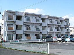 栃木県宇都宮市戸祭4丁目の賃貸マンションの外観