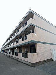 埼玉県新座市野火止7丁目の賃貸マンションの外観