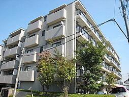 神奈川県川崎市宮前区小台2丁目の賃貸マンションの外観