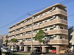 グレイシス浅川I[3階]の外観
