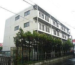 千葉県松戸市南花島4丁目の賃貸マンションの外観