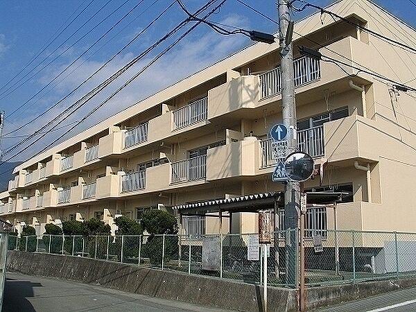 西田グリーンハイツ 2階の賃貸【山梨県 / 甲府市】