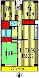 埼玉県越谷市中町の賃貸マンションの間取り
