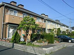 [テラスハウス] 神奈川県横浜市旭区さちが丘 の賃貸【/】の外観