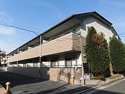 大阪府八尾市太子堂4丁目の賃貸マンションの外観
