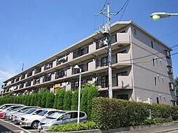 東京都府中市天神町1丁目の賃貸マンションの外観