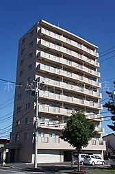ART 白石[7階]の外観
