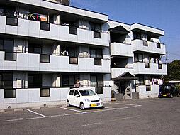 サファージュ高石 A棟[3階]の外観