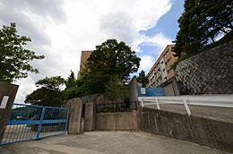 中学校西宮市立苦楽園中学校まで1527m