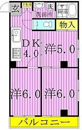 千葉県松戸市六実3の賃貸マンションの間取り