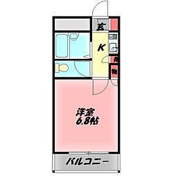 メゾンシェポル 7階1Kの間取り