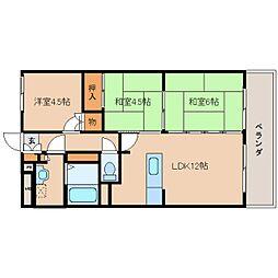 奈良県奈良市三条栄町の賃貸マンションの間取り