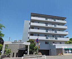 白鷹夙川マンションの外観写真