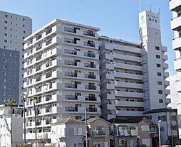 サンマリーナ新子安[11階]の外観