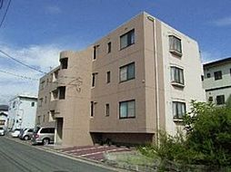 広島県広島市南区向洋新町3丁目の賃貸マンションの外観