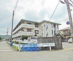 京都府京都市左京区岩倉南平岡町の賃貸マンションの外観